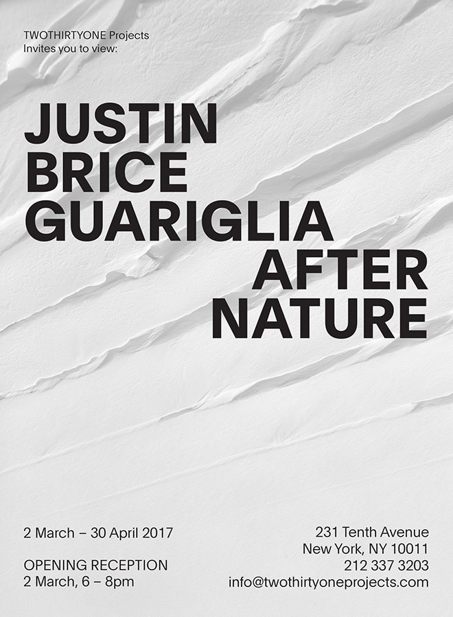 Exhibition Poster - After Nature - TwoThirtyOne Projects