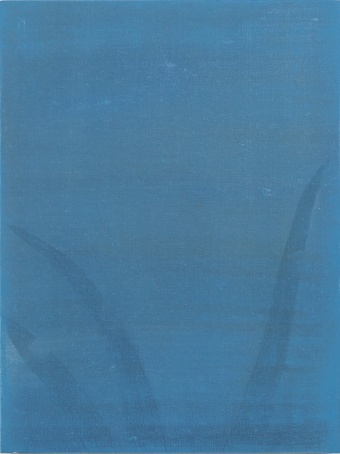 Sarah Pater, Blue aloe, 2015  Oil on panel, 12 x 9 in.  pate005