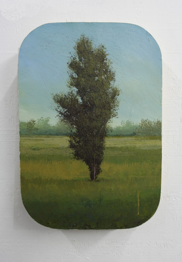 Peter Hoffer Saint-Thomas, 2012 Oil, acrylic, and resin on panel 24 x 16 inches