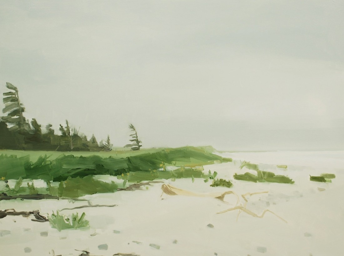 Sara MacCulloch  Tree & Beach 2012  Oil on canvas  36 x 48 inches