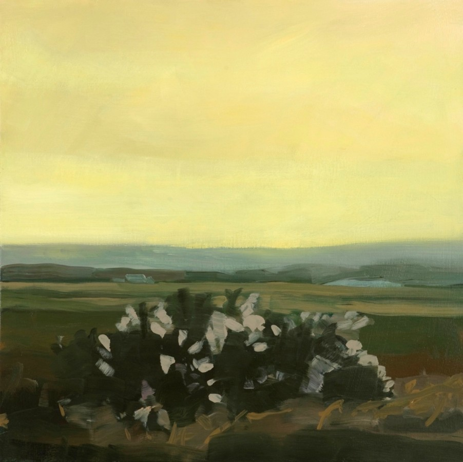 Sara MacCulloch  Shrub at Dusk 2012  Oil on canvas  24 x 24 inches
