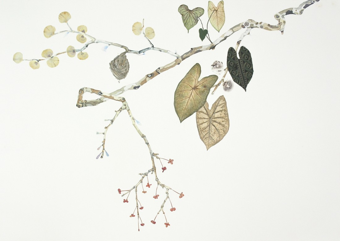 "Marilla Palmer's ""The Wasp in the Garden"" done with watercolor, fabric, wasp wings, spores, pressed foliage on Fabriano paper in shades of beige, gray and black. The work depicts a thin tree branch with leaves and buds sticking from it."