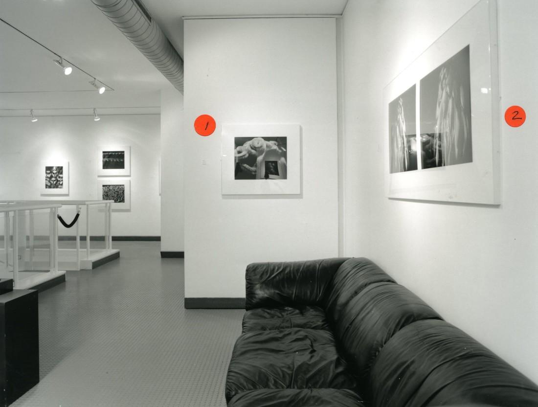<p>ANOUSHKA FISZ Installation View</p>