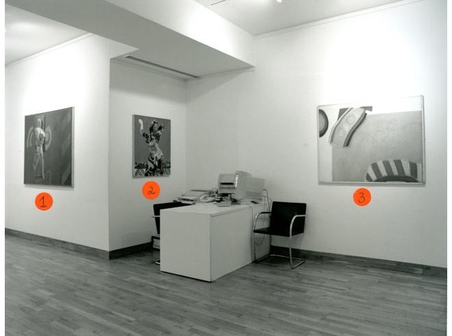 <p>PAULINE BOTY Installation View</p>