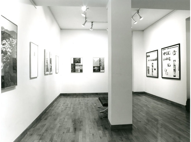 <p>LAND, BODY AND NARRATIVE ART Installation View</p>