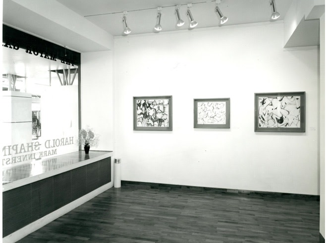 <p>HAROLD SHAPINSKY Installation View</p>