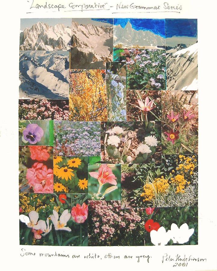 <p><strong>PETER HUTCHINSON</strong></p><p><em>Landscape Comparative</em>, 2001</p><p>Photocollage</p><p>33 x 27 cm</p><p>(13 x 10 5/8 in)</p><p>£1,500</p><p></p>