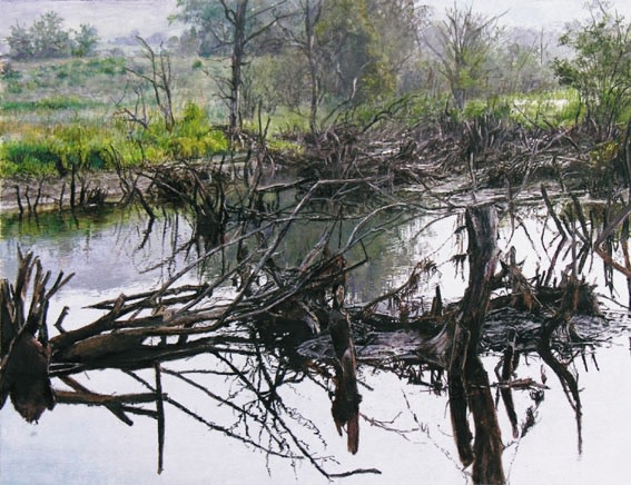 James Van Patten Charlotte Vally Swamp
