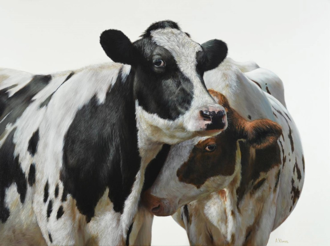 <p>Alexandra Klimas&#160;</p><p>&#34;Ella and Lily the Cows&#34;</p><p>Oil on canvas</p><p>100 x 130 cm</p>