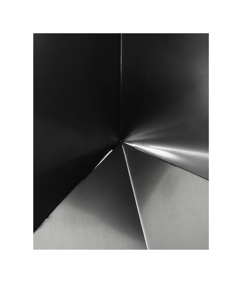 Untitled (Bicho Invertebrado, #11), 2013