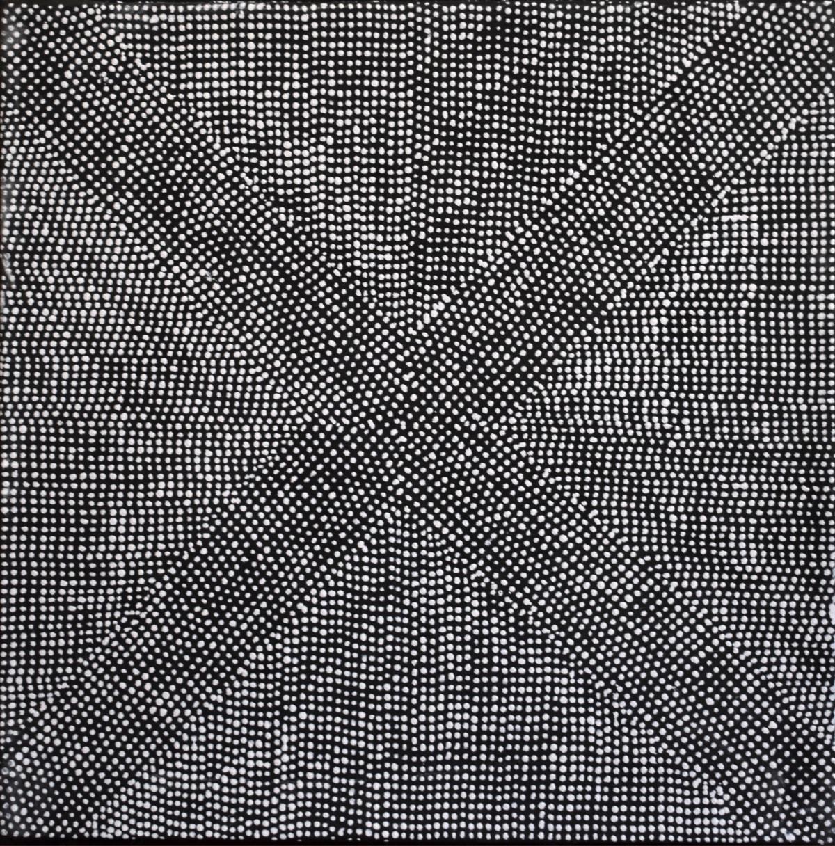 Barbara Puruntatameri Murrakupupuni natural ochres on canvas 45 x 45 cm