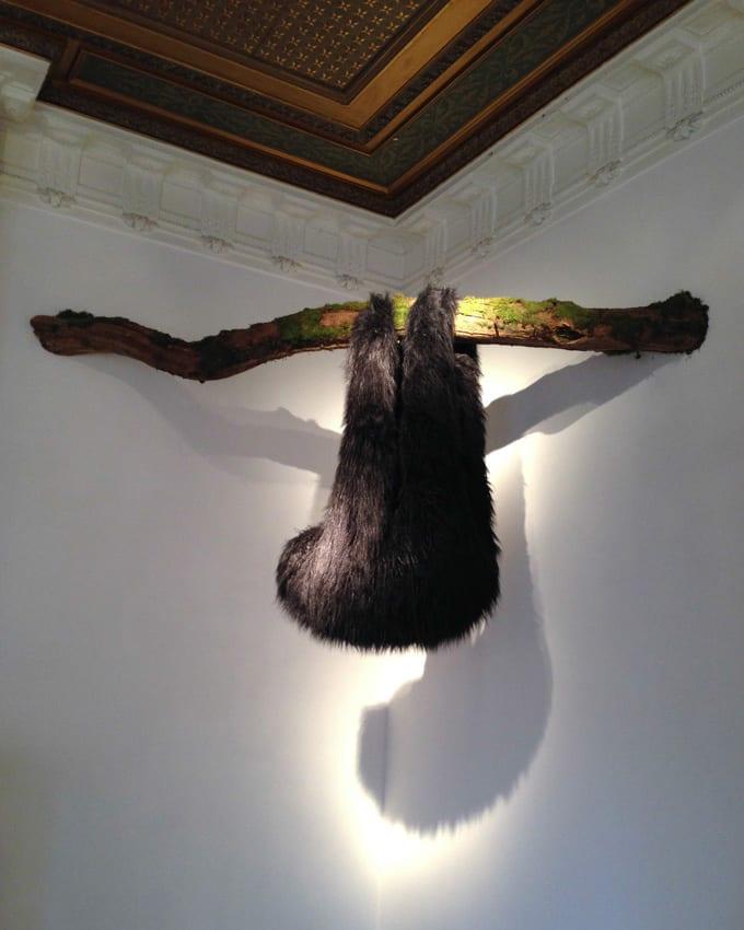 Elodie ANTOINE, Paresseux, 2014