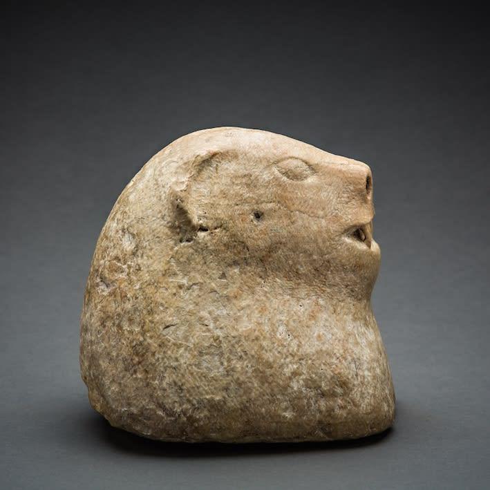 Central Asian Head of an Animal, 1500 BCE - 900 BCE Stone 14 x 15 x 13 cm 5 1/2 x 5 7/8 x 5 1/8 in