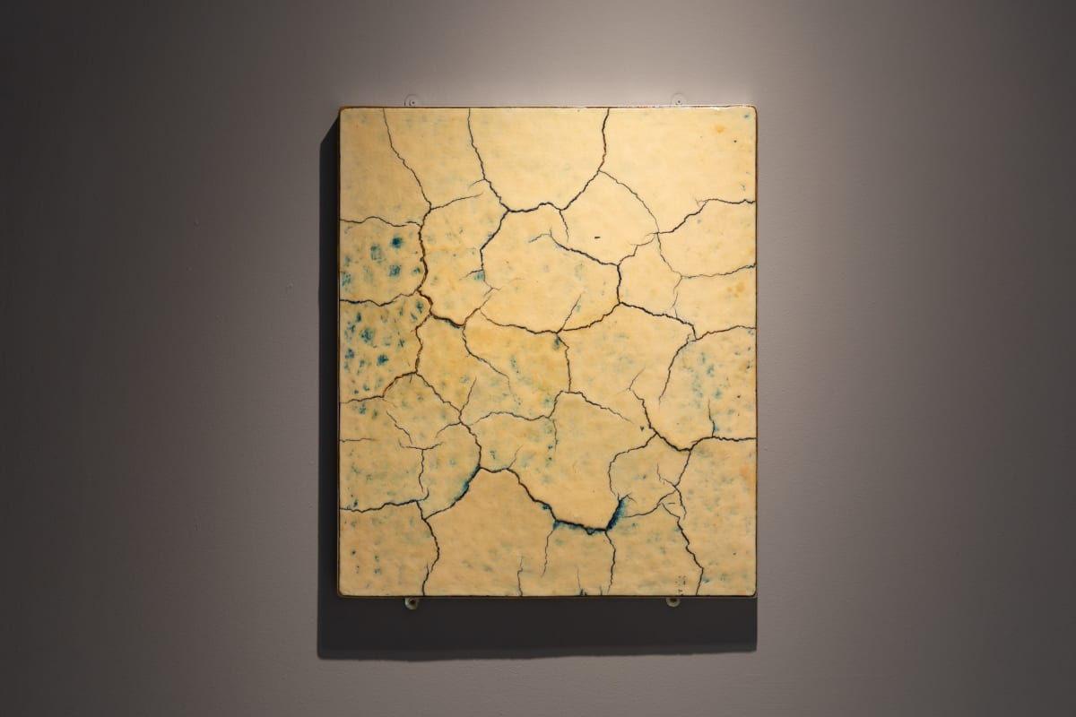 Meekyoung Shin Written in Soap, 2012 Soap, varnish, pigment 61 x 52 cm 24 1/8 x 20 1/2 in