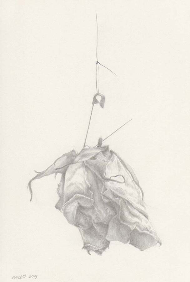 "Marjorie Williams-Smith Pin and Rose , 2013 Silverpoint 5 3/8"" x 3 15/16"""