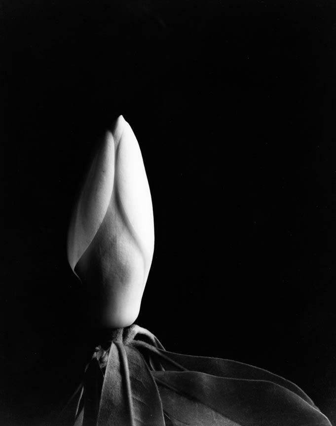 Magnolia Bud 2, 1920