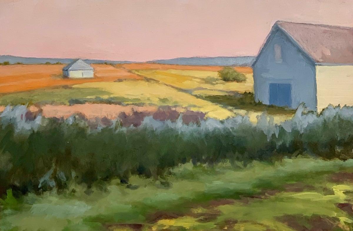 Sally Maca, Summer Fields, 2019