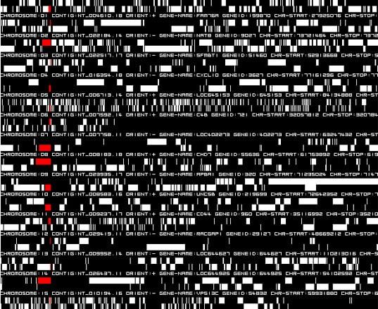 IKEDA Ryoji, Datamatics (ver. 2.0), 2006
