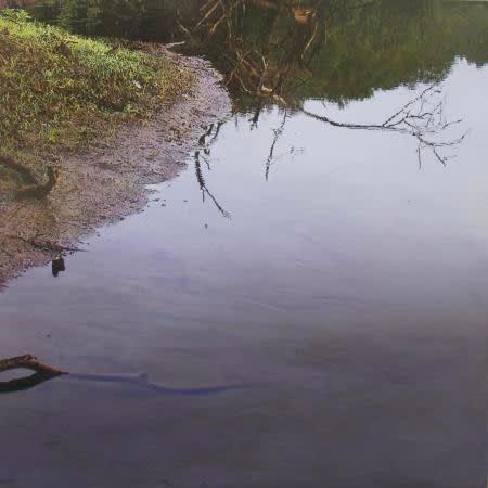 James Van Patten Stick in the Mud Acrylic on linen 122 x 122 cm