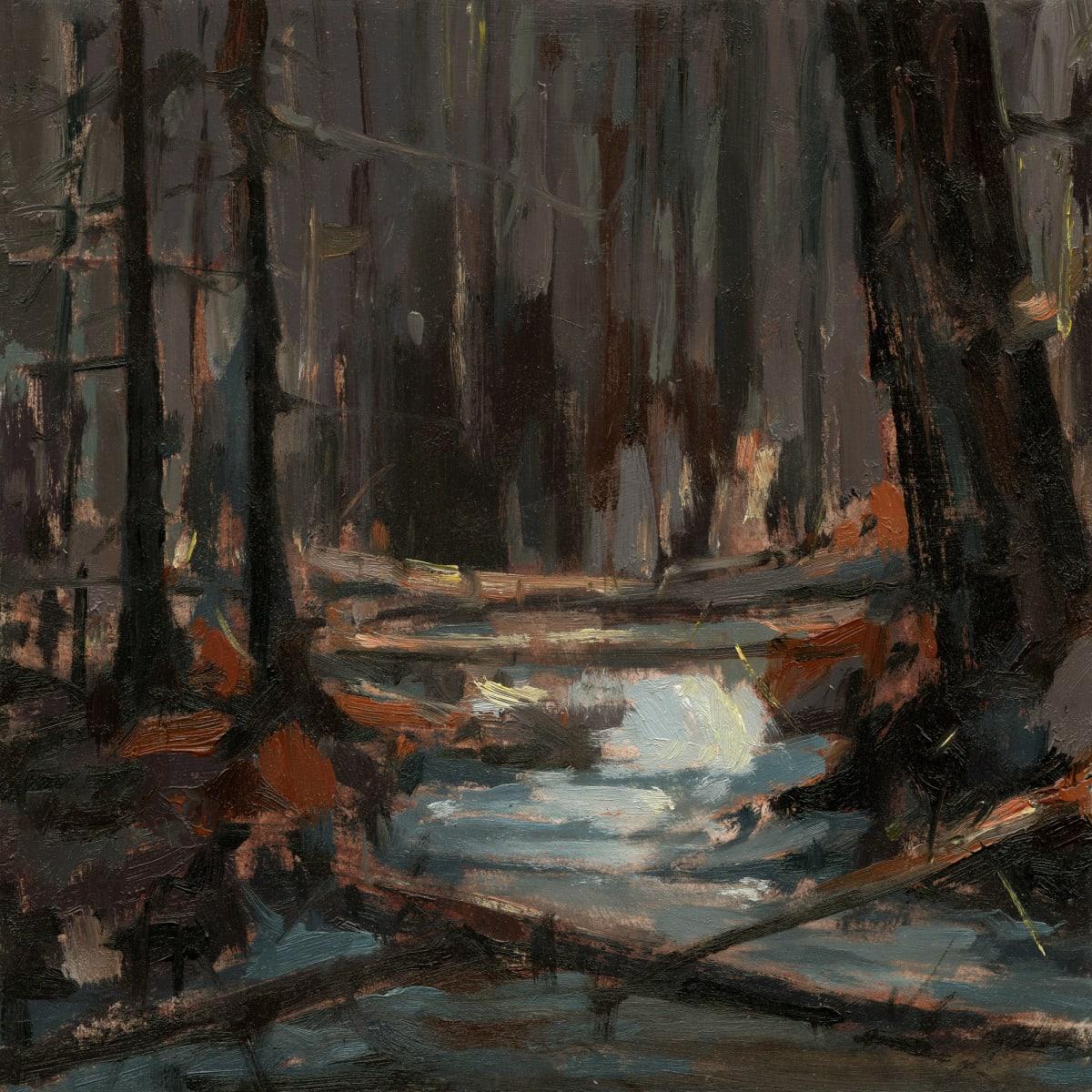 Jared Shear, Dark Waters, 2019