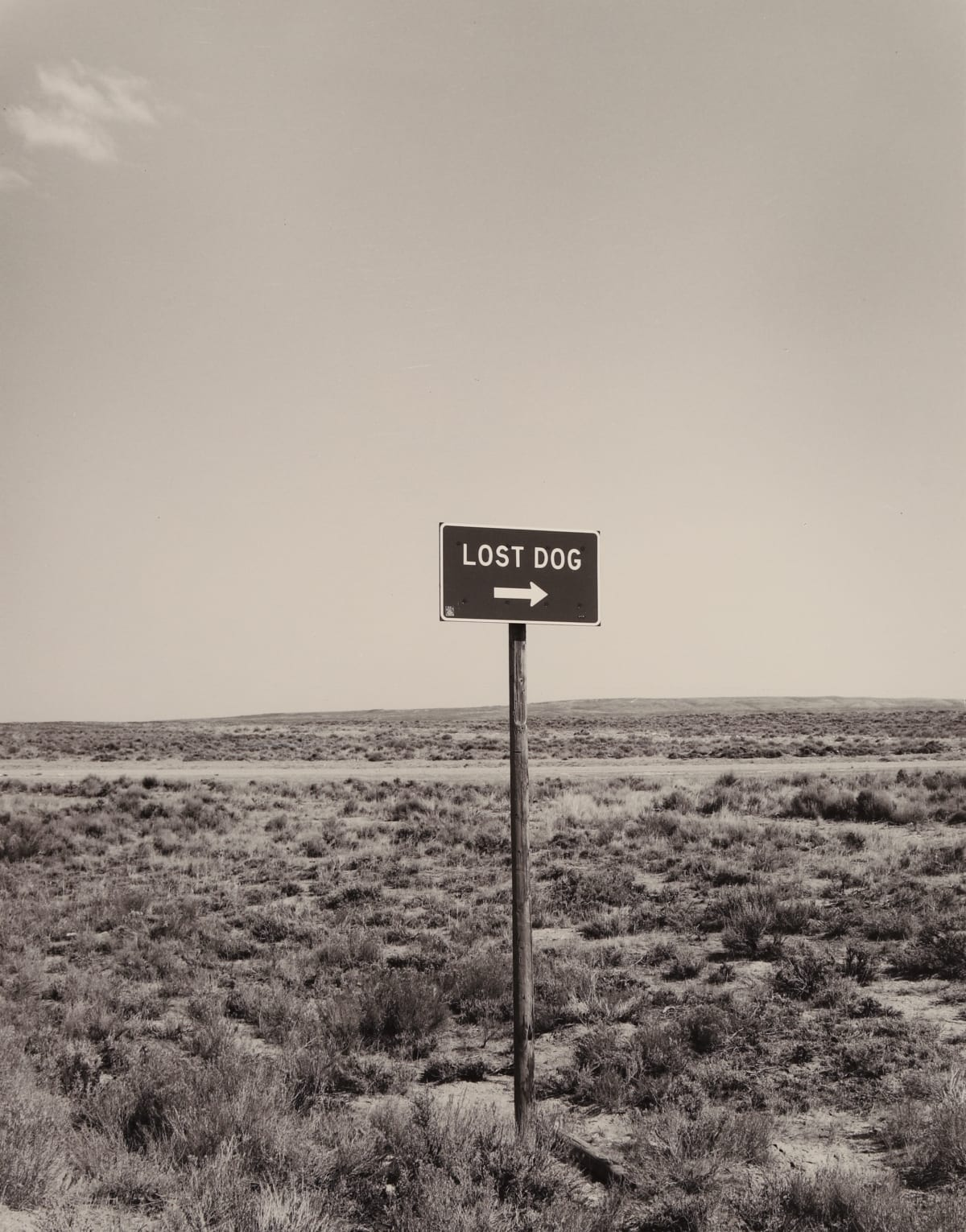 Bob Kolbrener, Lost Dog, Nevada, 1979