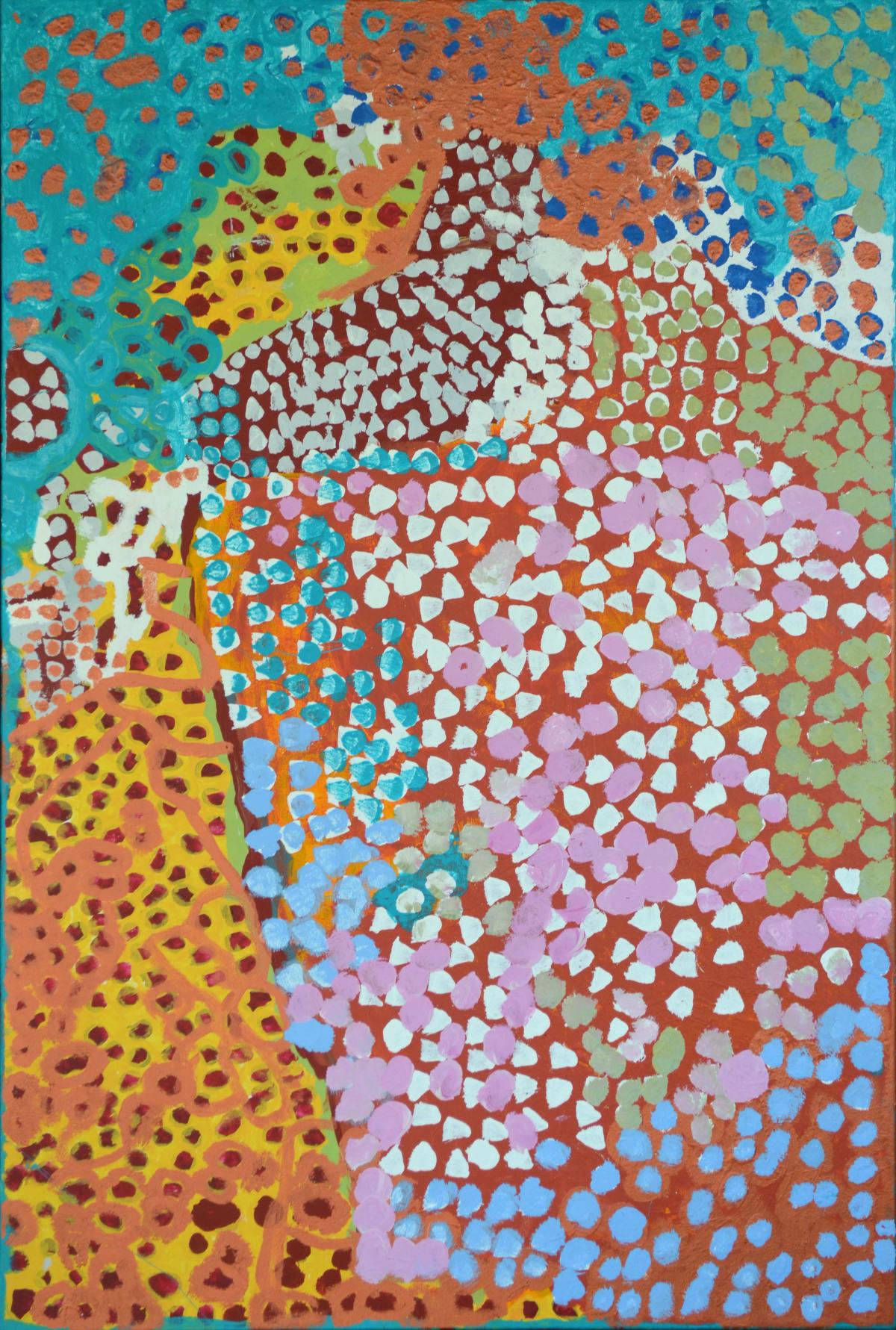 Daisy Japulija No Story This One acrylic on canvas 80 x 120 cm