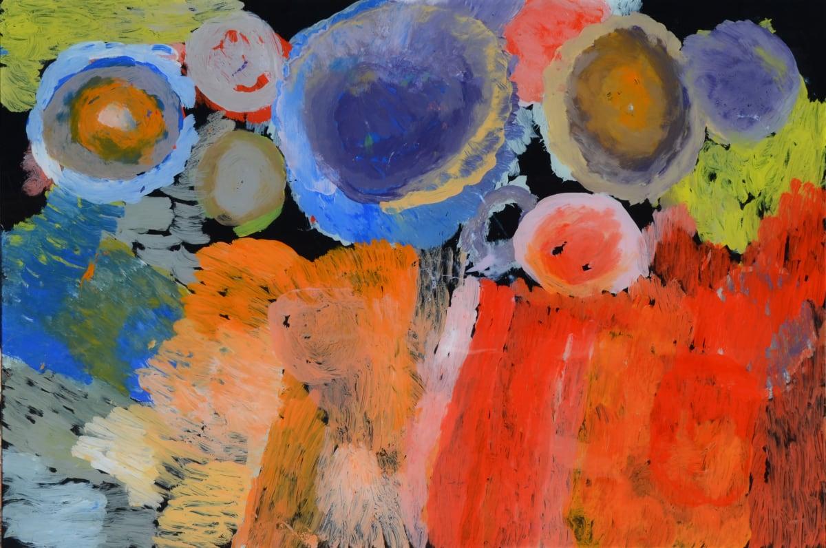 Rosie Uhl JILA LIVING WATERHOLE acrylic on polycarbonate 60 x 90 cm