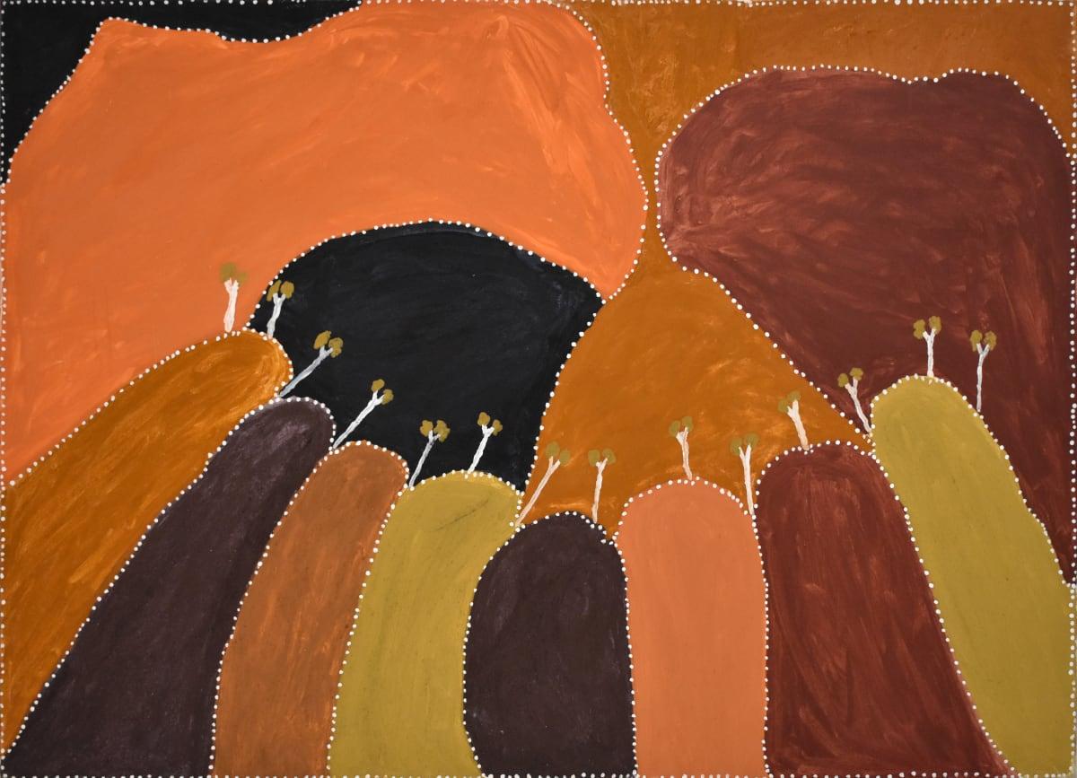 Patrick Mung Mung Yoonggoony, 2012 Natural ochre & pigment on canvas 140 x 100 cm