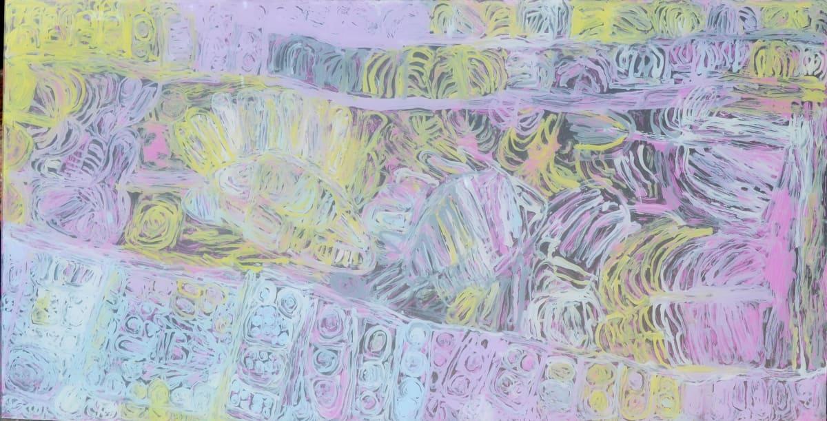 Sonia Kurarra Martuwarra acrylic on polycarbonate 60 x 120 cm