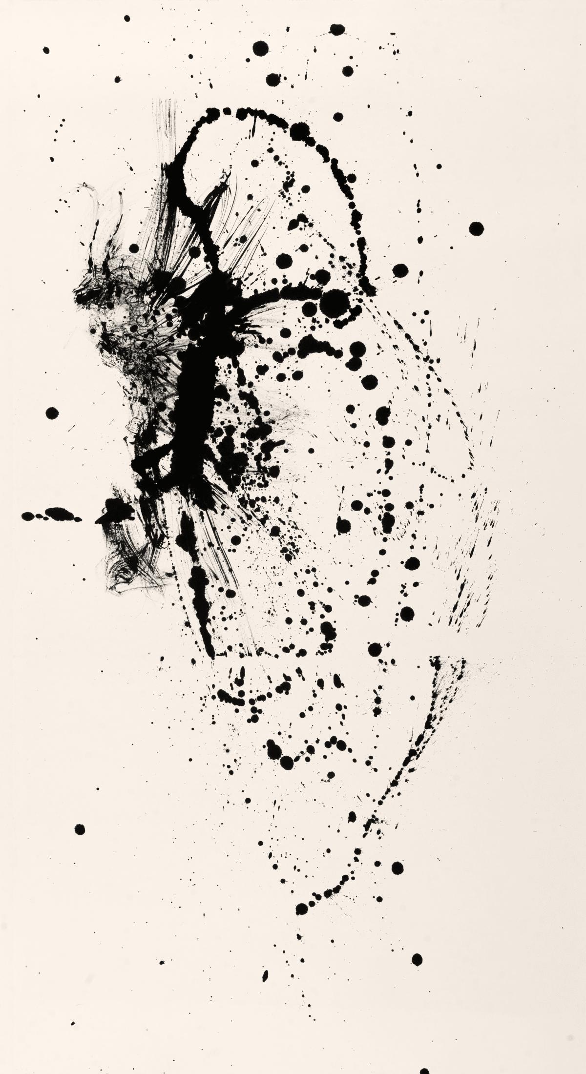 Chloe Ho 何鳳蓮, Essential Metamorphosis, 2015