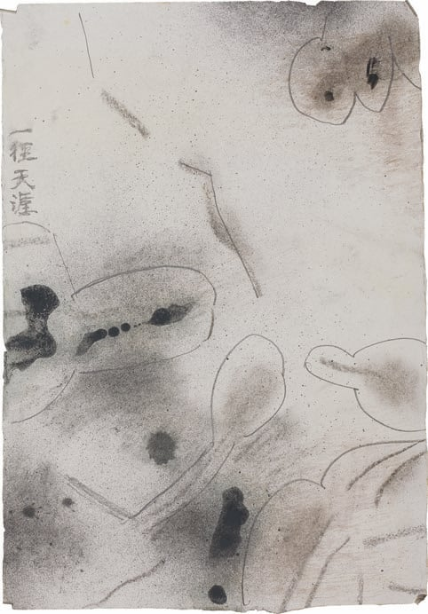 Wang Jieyin 王劼音, The Notes of Classical Chinese 6, 2004