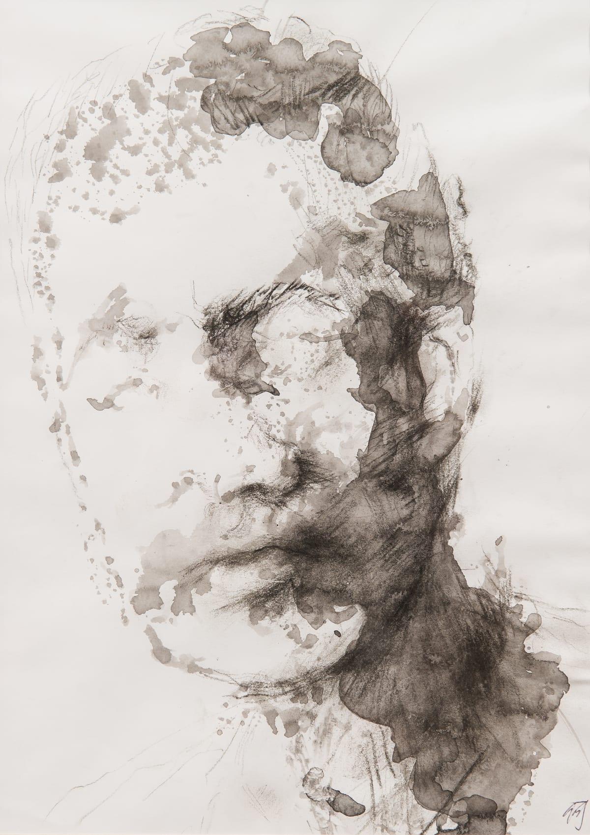 Chloe Ho 何鳳蓮, Amorphous, 2014