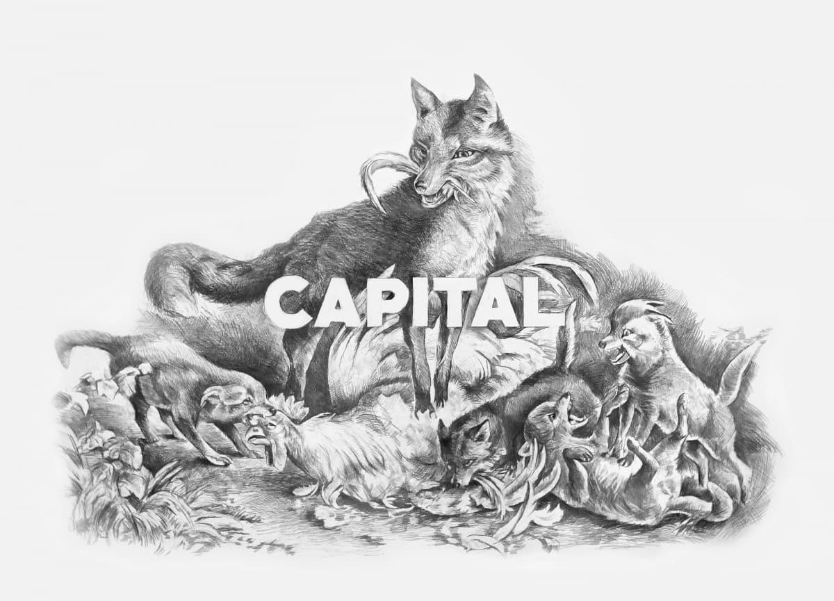 Filip MARKIEWICZ, Capital fox, 2015