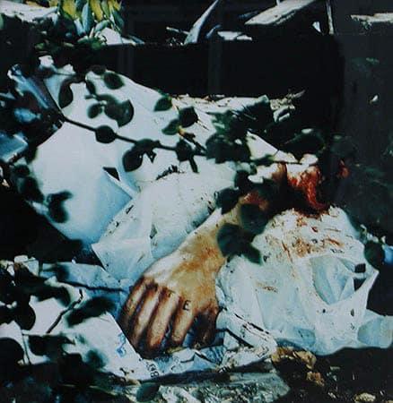John ISAACS, A necessary change of heart, 1999