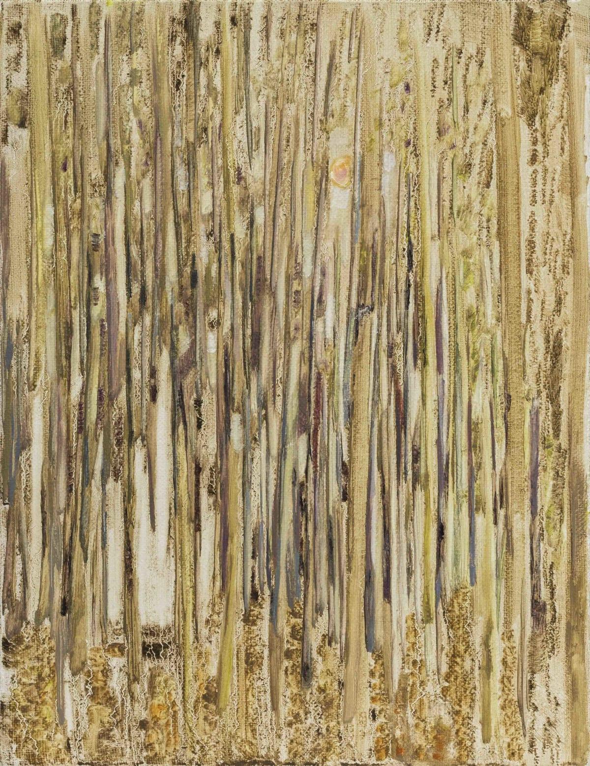 Hua Xiyu, Spring No.1 泉No.1, 2017