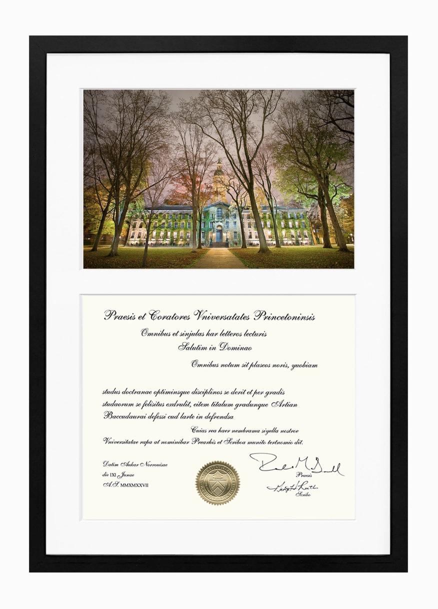 Austin Chow, Custom Diploma Package // Princeton University, 2017