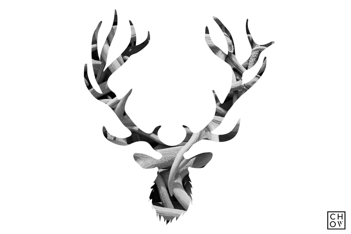 Austin Chow, Antlers // Elk Avatar, 2018