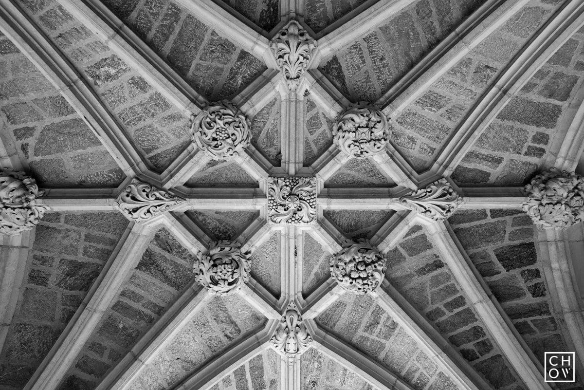 Austin Chow, Arches // Princeton University, 2017