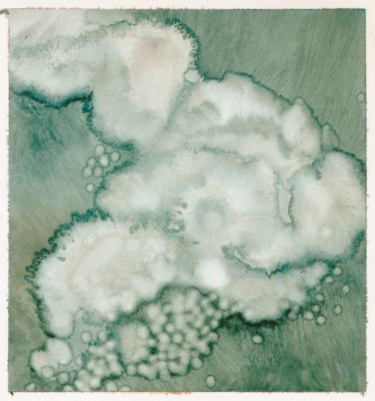 Sarah Biggs, Little cloud, 2019