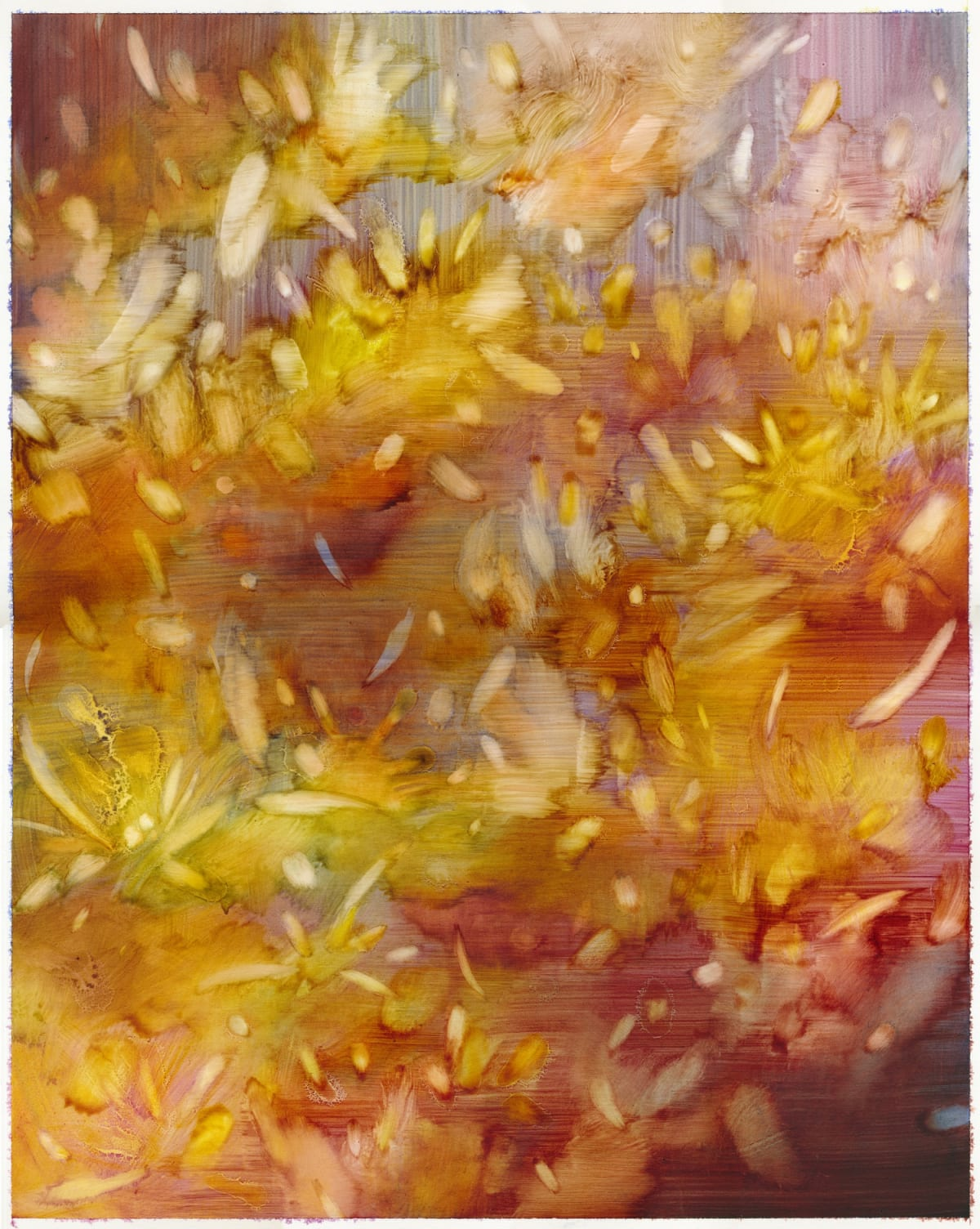 Sarah Biggs, Superbloom, 2019