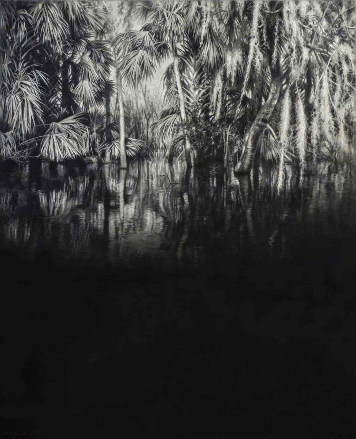Jaco van Schalkwyk, Therapy for Narcissus, 2019