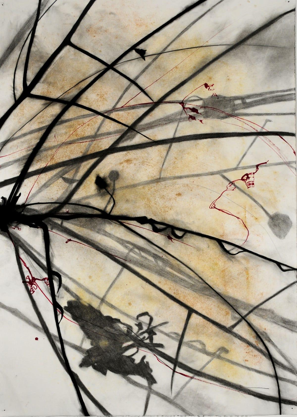 """Susan Davidoff Palo Verde Azul 1 Mixed media on paper 29.5 x 41.5"""" unframed 37.5 x 49.5"""" framed"""
