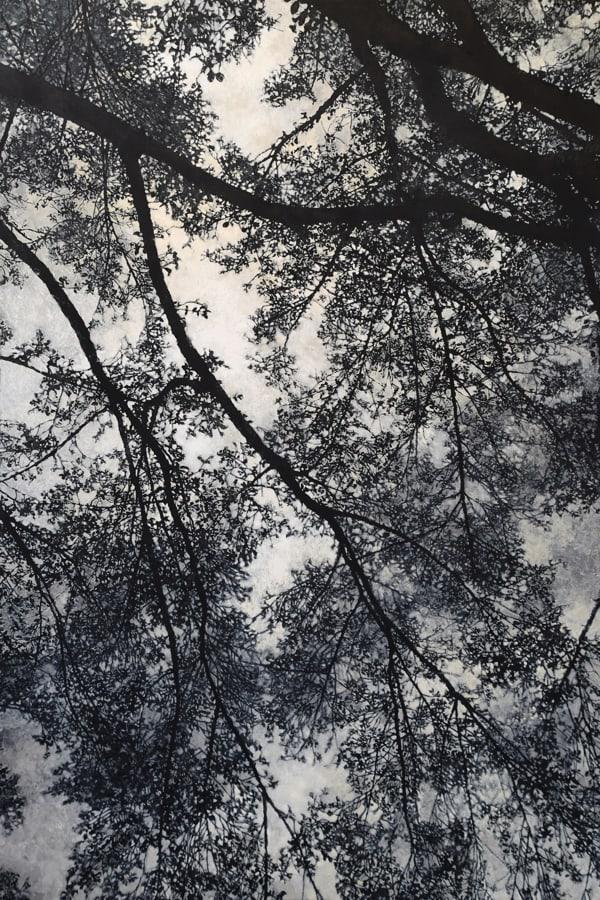 "Gosia Podosek Upwards 1 Oil on canvas 44 x 66"" unframed"