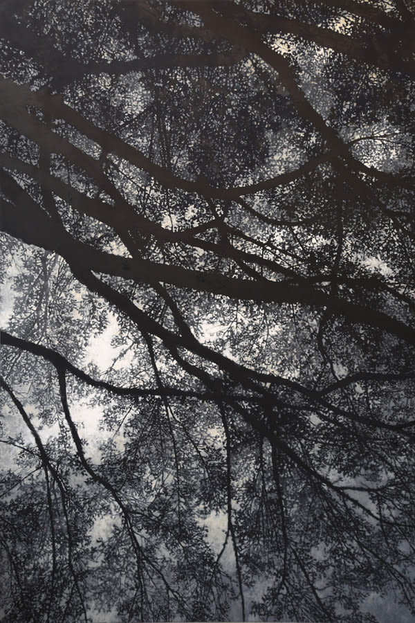 "Gosia Podosek Upwards 2 Oil on canvas 44 x 66"" unframed"