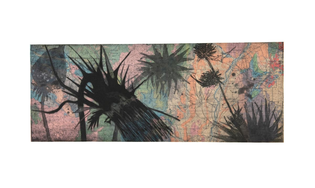 """Susan Davidoff New Mexico Geology / Sacramento Mountain Thistle, 2018 Chine colle etching on paper 28"""" x 18"""" unframed 32.75 x 22"""" framed #9/24"""