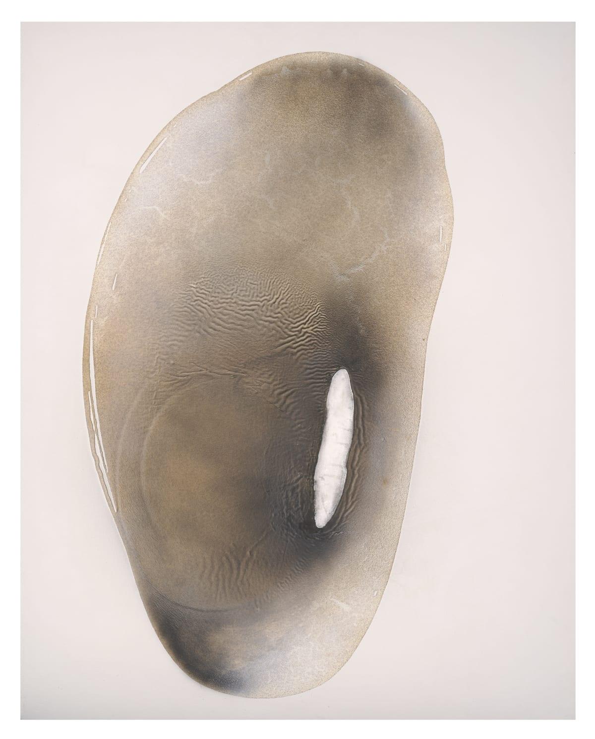Stella Zhang 張爽, 0-Viewpoint-5-19 0-視點-5-19, 2011