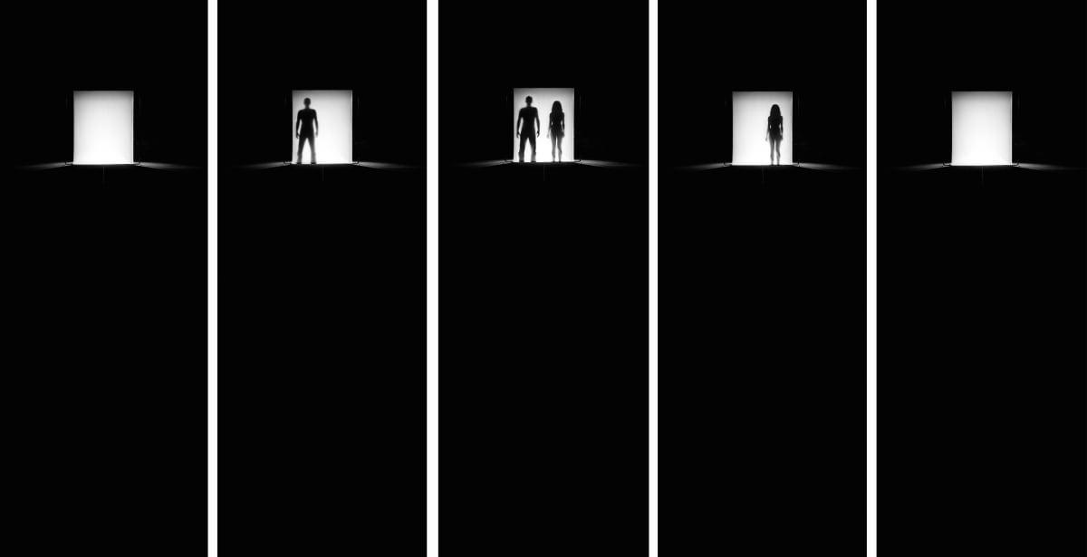 Roland Biermann, Apparition 38, 2009