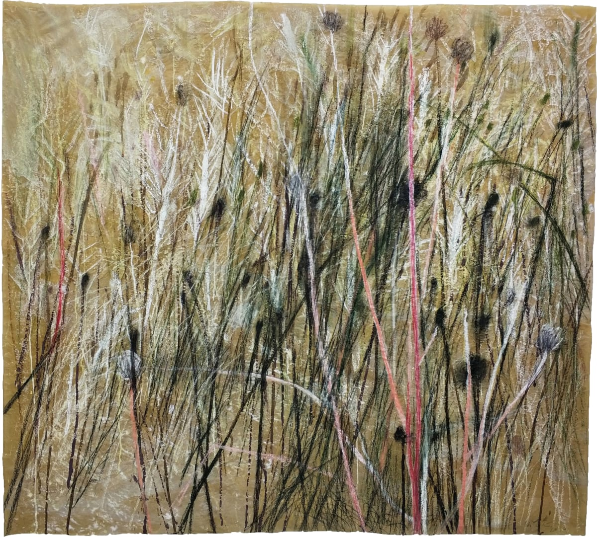 Wang Gongyi 王公懿, Leaves of Grass No.7 草葉集之七, 2019