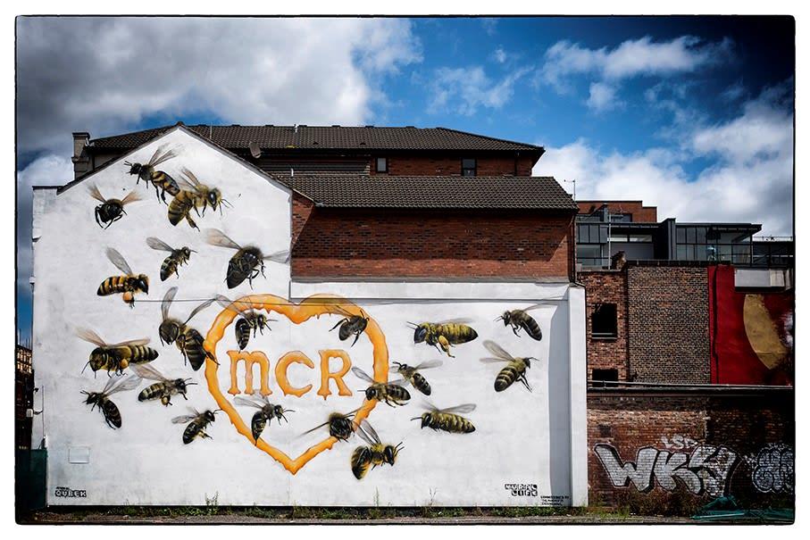 Peter Aitchison, Manchester Bees, 2018