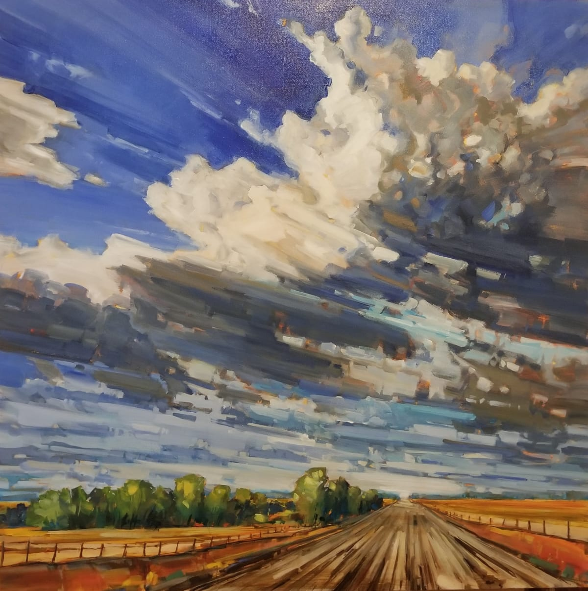 Holly Dyrland, Under Billowing Skies
